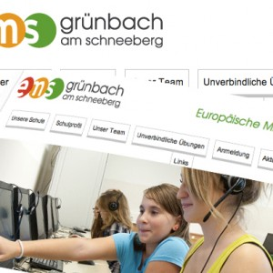EMS Grünbach Website